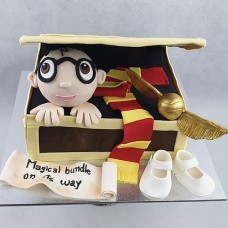 Baby Shower Cake - Harry Potter (D,V)