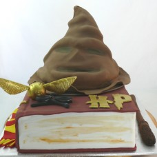 Harry Potter Sorting Hat Cake (D)