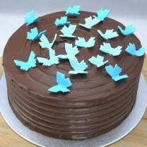 Chocolate Buttercream with Swirling Butterflies (D,V)