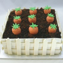 Vegetable Patch Cake (D, V)