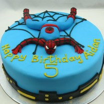 Superheroes: Spiderman Cake (D,V)