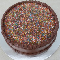 Chocolate Buttercream Icing with Sprinkles Cake (D)